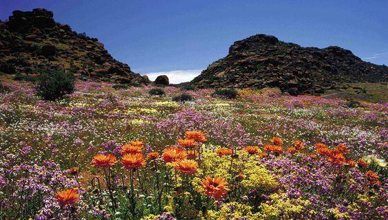 © Namaqua Park